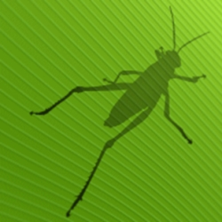 The Grasshopper logo which is a dark grasshopper silhouette over a green leaf texture.
